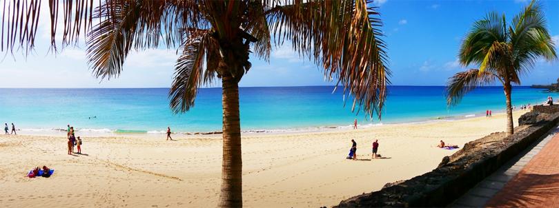 Die Insel Fuerteventura auf den Kanaren in Spanien - Mit Sandstrand, Palmen und türkisblauem Meer.